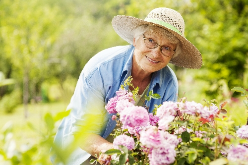 I have difficulty with various gardening activities e.g. weeding, hoeing, raking, potting or planting